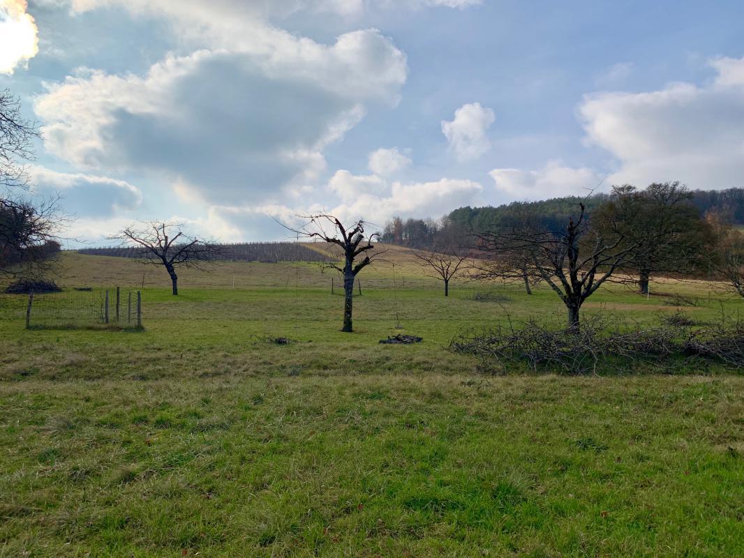 Terrains du constructeur MAISONS ARLOGIS MACON • 1200 m² • CHARDONNAY
