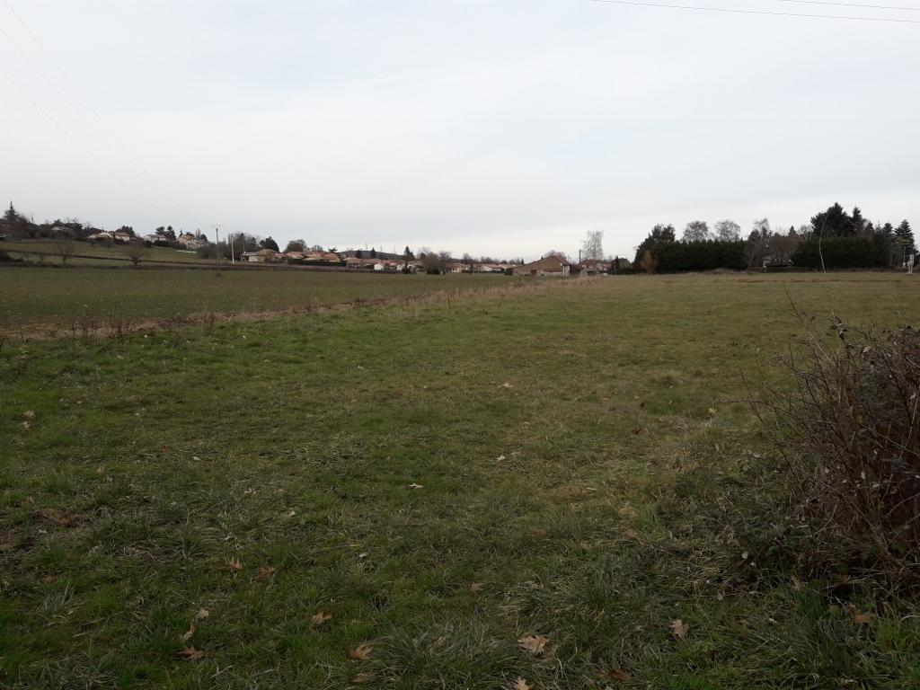 Terrains du constructeur MAISONS ARLOGIS MACON • 1176 m² • TOURNUS
