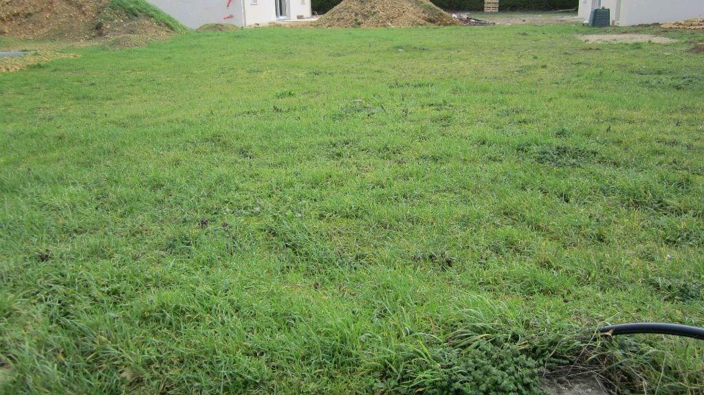 Terrains du constructeur Declic immo 17 • 0 m² • SAINT GEORGES DU BOIS