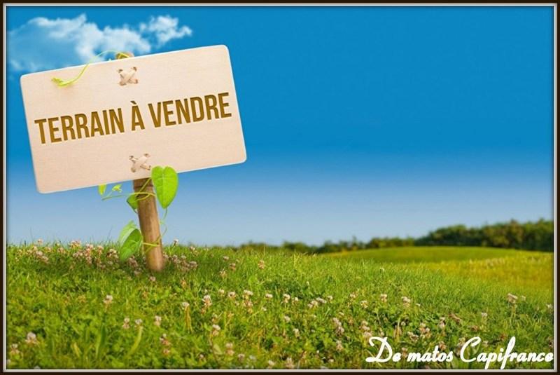 Terrains du constructeur CAPI FRANCE • 20000 m² • SINNAMARY