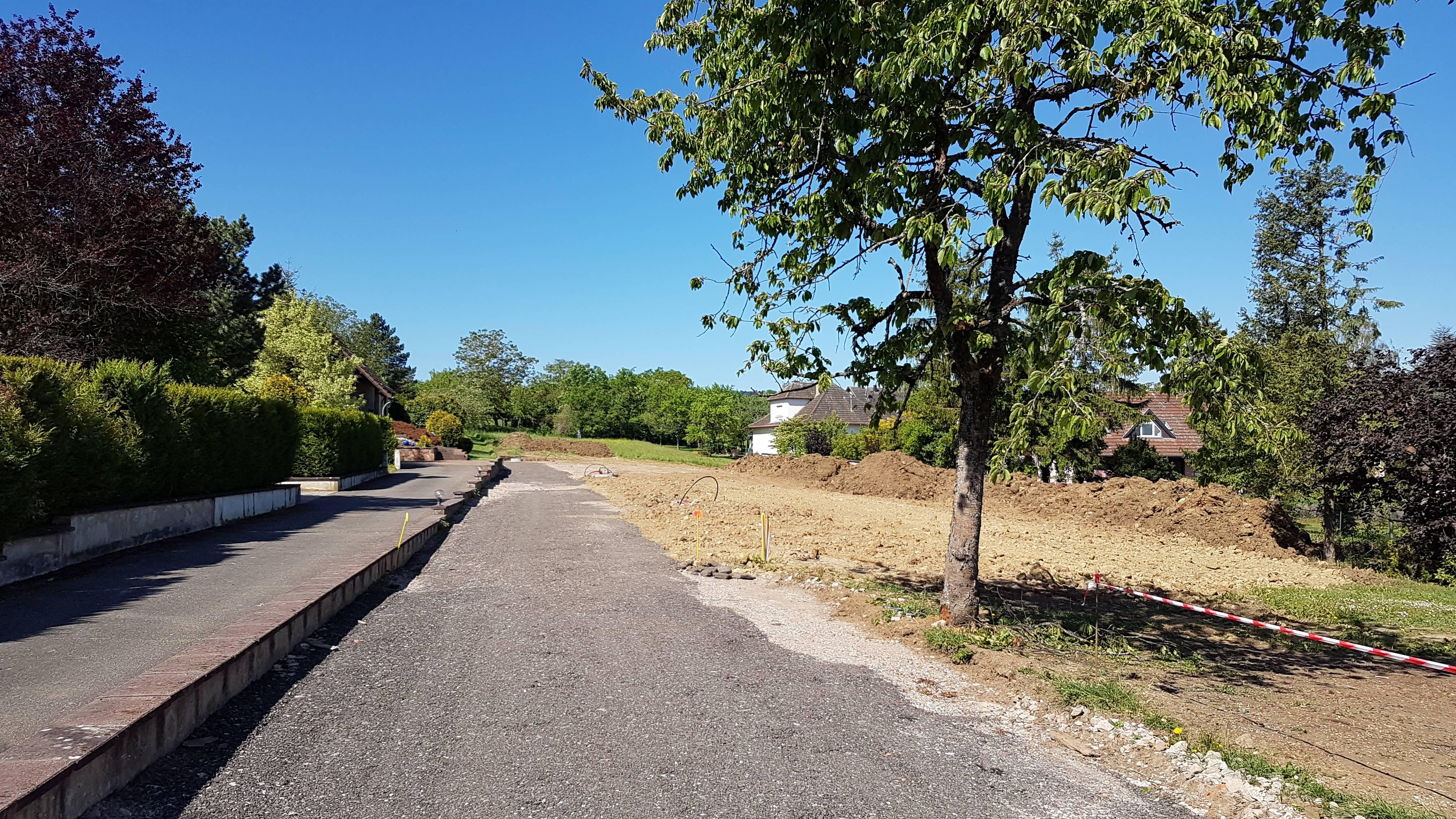 Terrains du constructeur SOCIETE MAISONS HANAU • 540 m² • MARMOUTIER