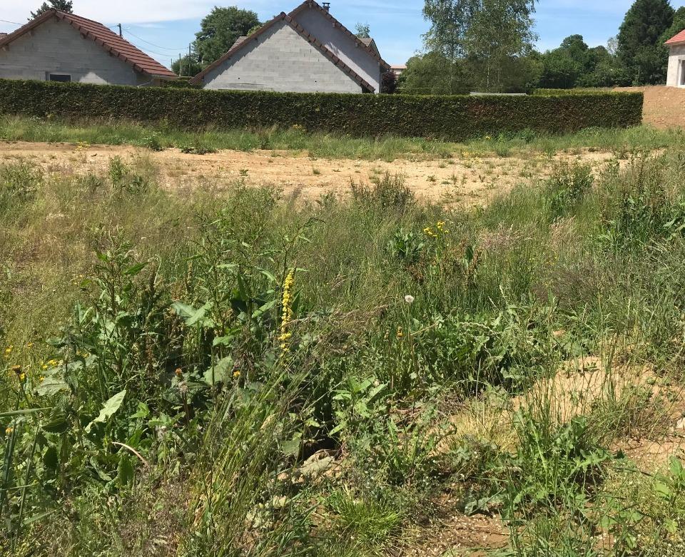Terrains du constructeur MAISONS FRANCE CONFORT • 1100 m² • VALDAHON