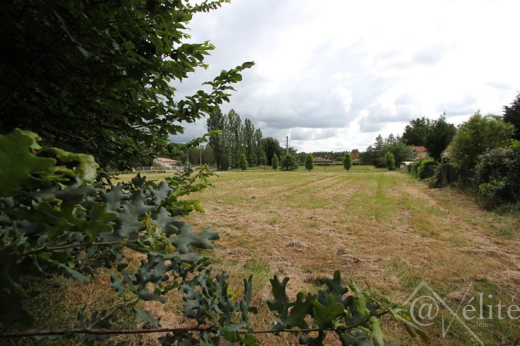 Terrains du constructeur AXELITE IMMO • 843 m² • ALBIAS