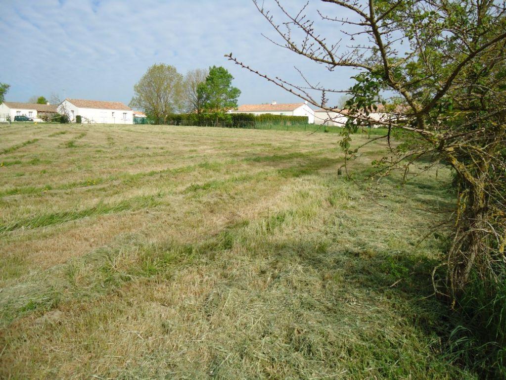 Terrains du constructeur L ADRESSE LONGEVILLE SUR MER • 878 m² • SAINT HILAIRE LA FORET