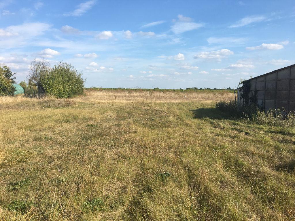 Terrains du constructeur SARL AGENCE SAUMUROISE TRANSACTION IMM • 1233 m² • MARTIGNE BRIAND