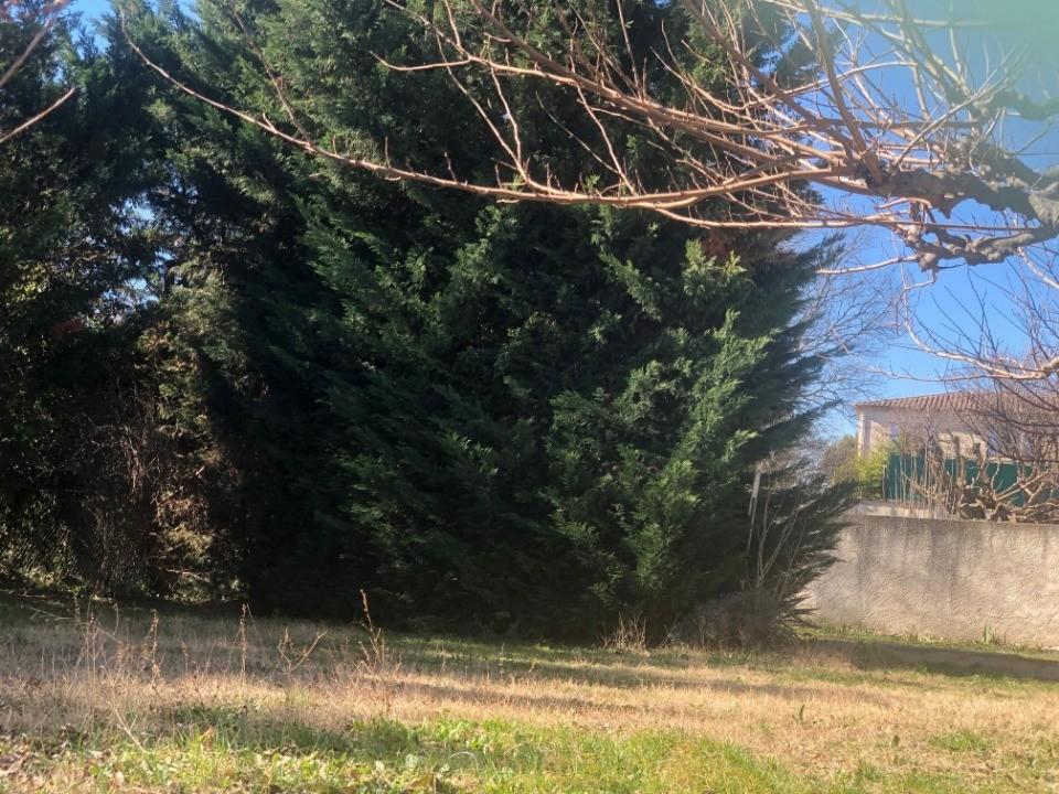 Terrains du constructeur LES MAISONS DE MANON • 487 m² • LAMBESC