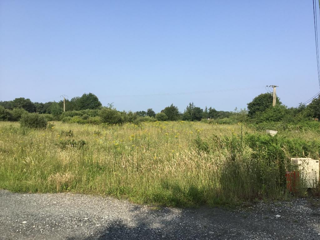 Terrains du constructeur LA MOTHE IMMOBILIER • 8761 m² • SAINT GEORGES DE POINTINDOUX