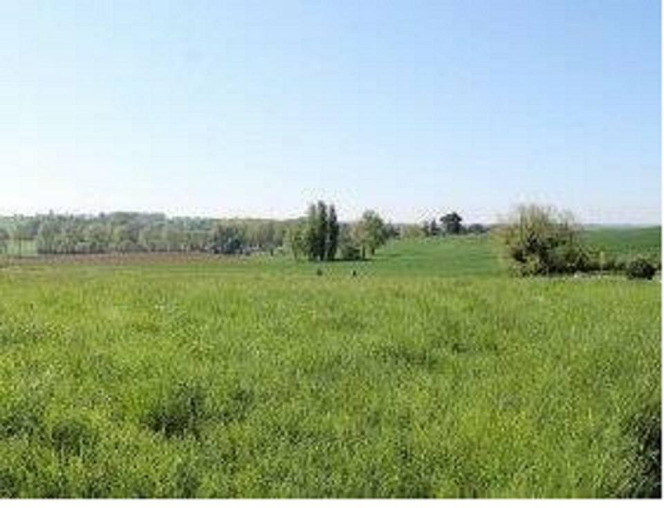 Terrains du constructeur MAISONS FRANCE CONFORT • 967 m² • VRIGNY