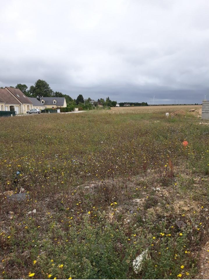 Terrains du constructeur MAISONS FRANCE CONFORT • 502 m² • SARCEAUX