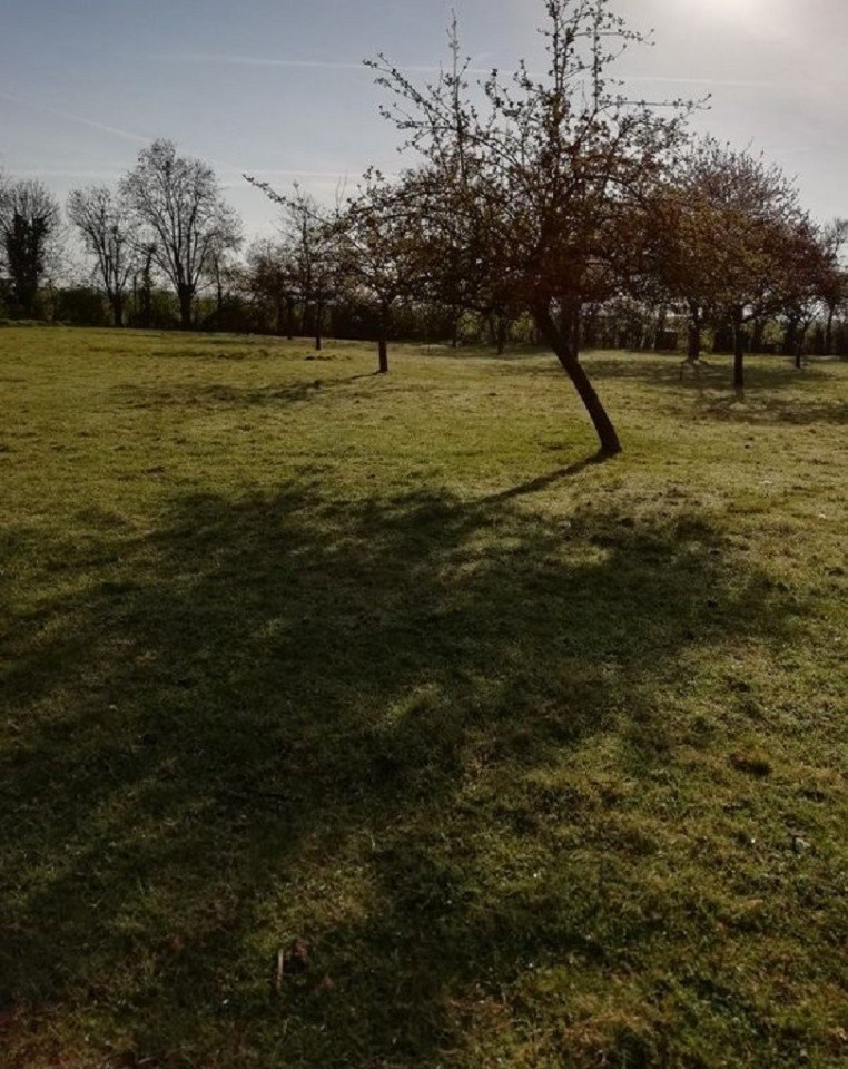 Terrains du constructeur MAISONS FRANCE CONFORT • 997 m² • LE SAP