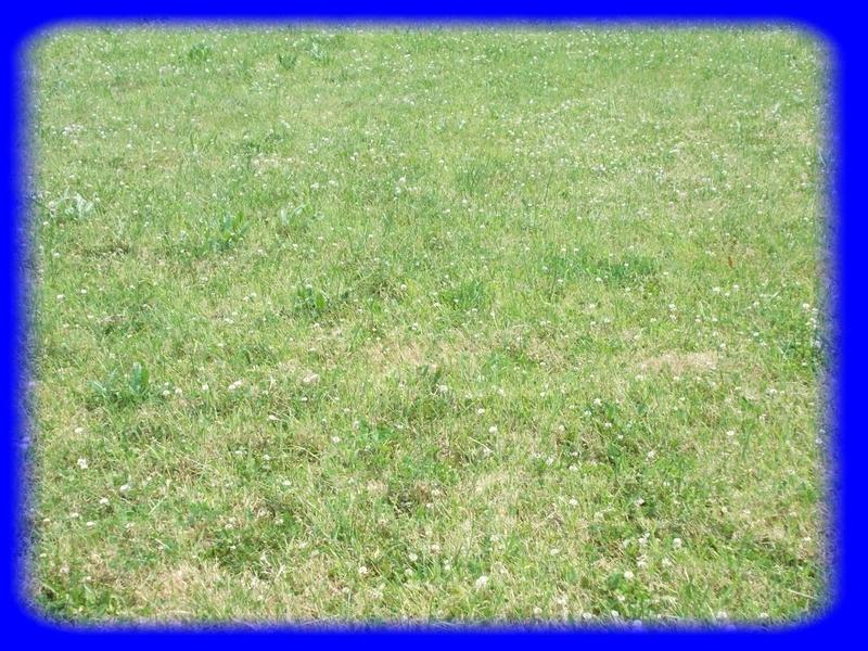 Terrains du constructeur Groupe Maxihome • 0 m² • NIVILLAC