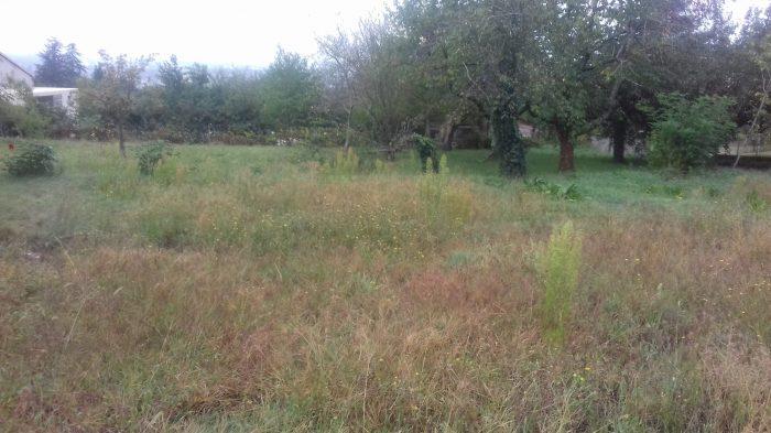 Terrains du constructeur D ARC IMMO 81 • 1411 m² • ARTHES