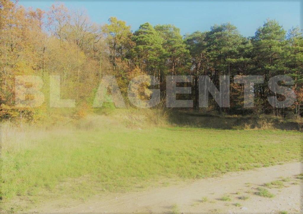 Terrains du constructeur BL AGENTS • 2816 m² • LANDREVILLE