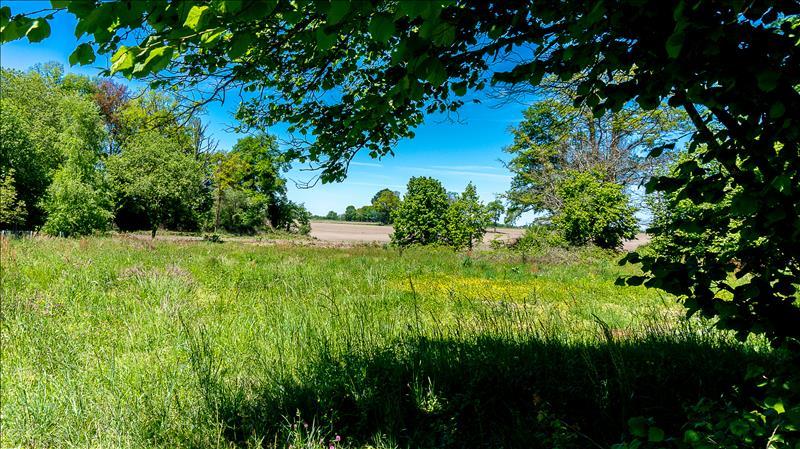 Terrains du constructeur IMMO 64 • 2762 m² • SOUMOULOU