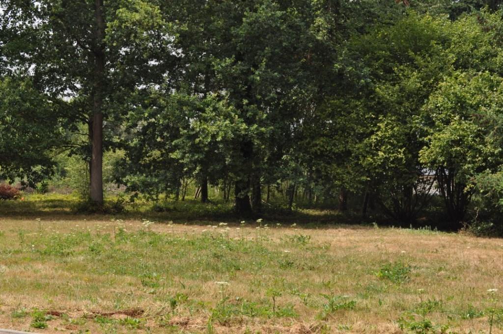 Terrains du constructeur 2G IMMO l adresse • 0 m² • AMFREVILLE SUR ITON