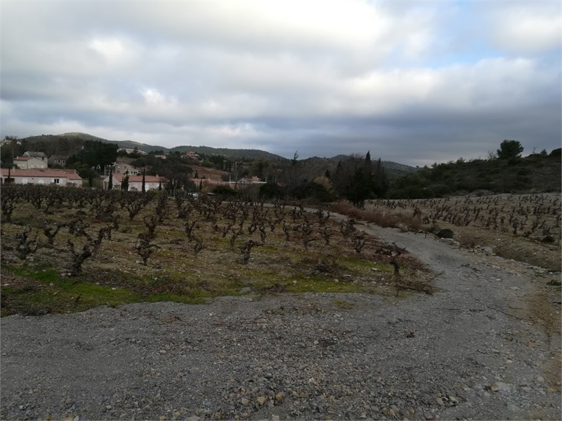 Terrains du constructeur OPTIMHOME • 2064 m² • EMBRES ET CASTELMAURE