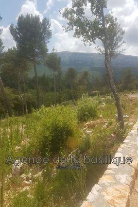 Terrains du constructeur AGENCE DE LA BASILIQUE • 769 m² • NANS LES PINS
