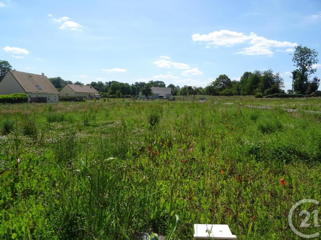 Terrains du constructeur CENTURY 21 - CHRISTOPHE DUCLOS • 1010 m² • SAINT MARTIN DU TILLEUL