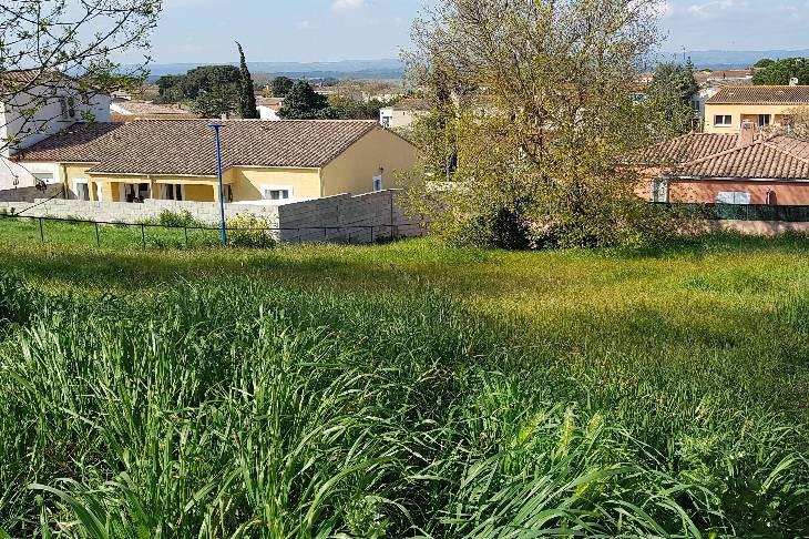 Terrains du constructeur MAISONS FRANCE CONFORT • 786 m² • PEZENS