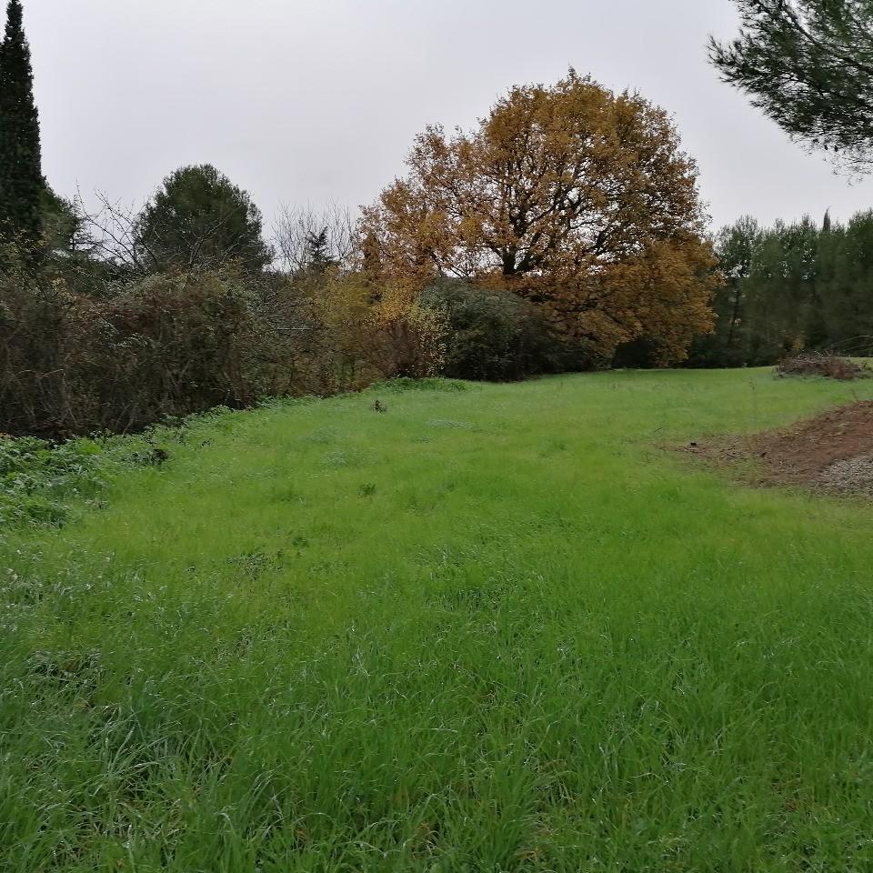 Terrains du constructeur MAISONS FRANCE CONFORT • 1400 m² • VILLENEUVE LES MONTREAL