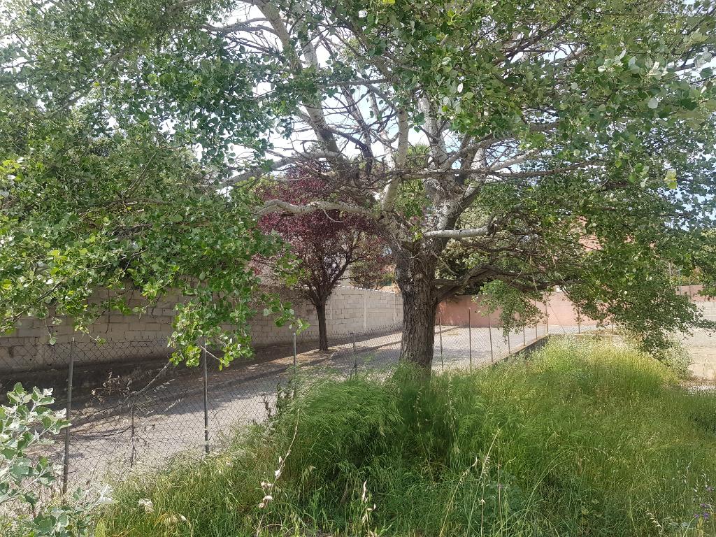 Terrains du constructeur LIONEL PENANT IMMOBILIER • 554 m² • SORGUES