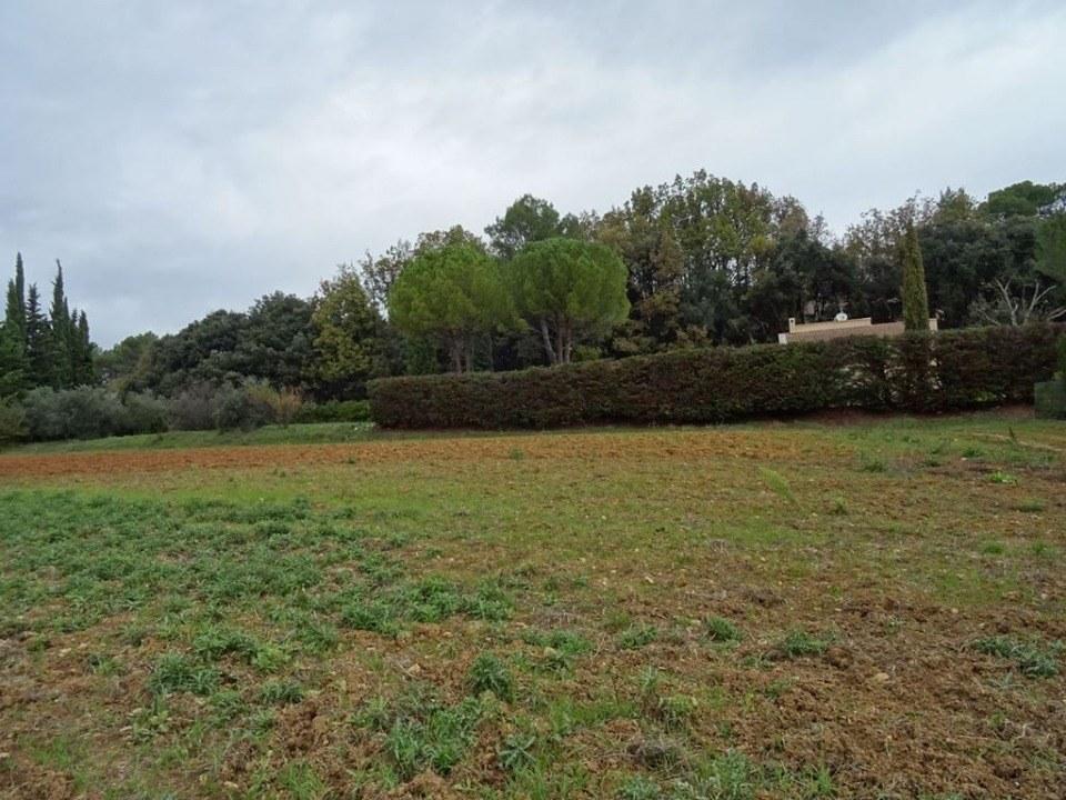 Terrains du constructeur LES MAISONS DE MANON • 923 m² • PLAN D'AUPS SAINTE BAUME