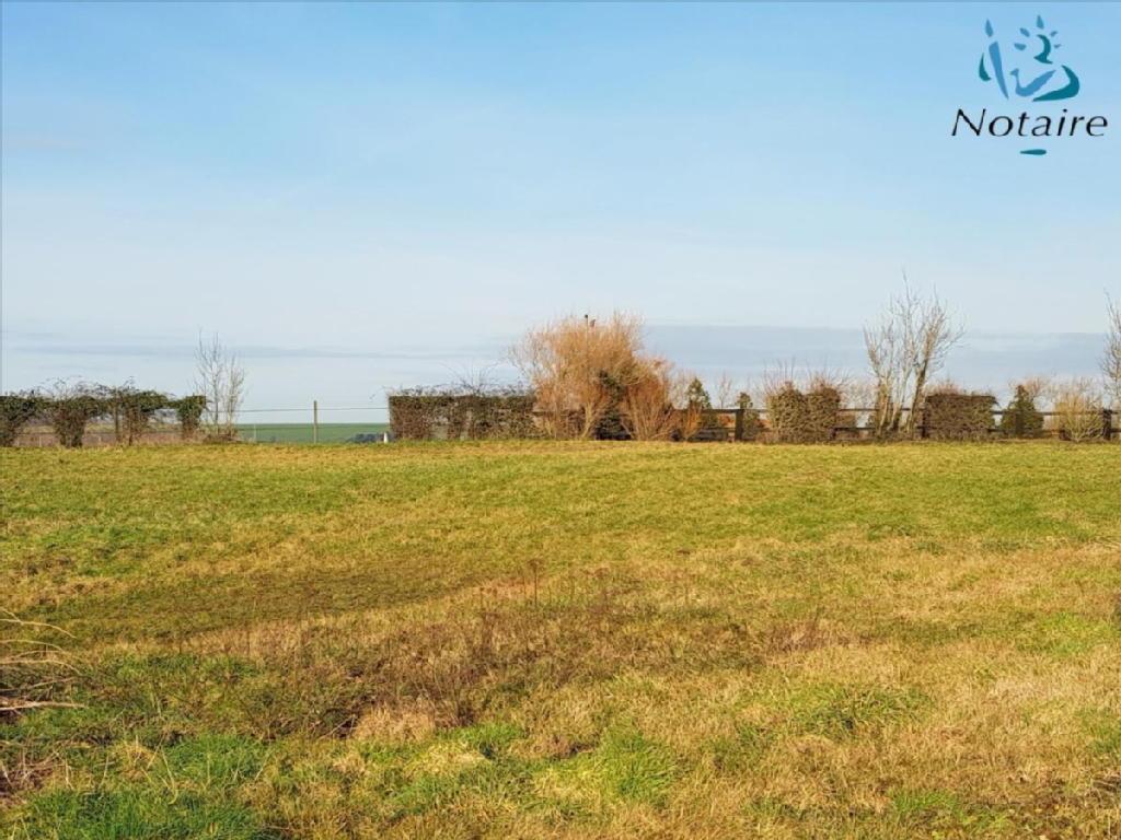Terrains du constructeur N.DAUDRUY ET C.DEGONDE NOTAIRES • 1000 m² • WIERRE EFFROY