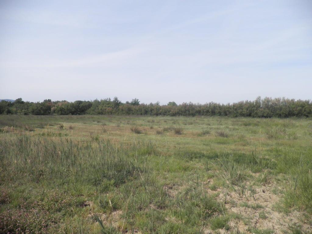 Terrains du constructeur L IMMOBILIER DU SUD • 16915 m² • SIGEAN