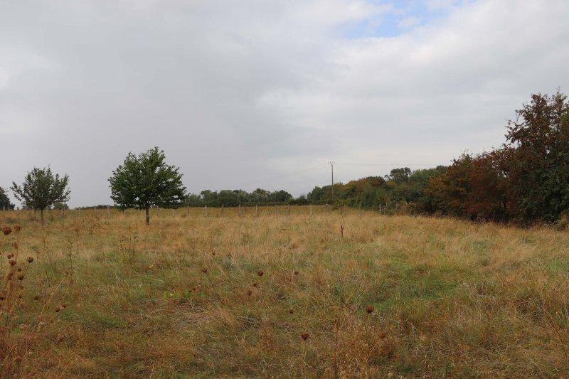 Terrains du constructeur AGENCE DE LA VALLEE • 920 m² • REBAIS