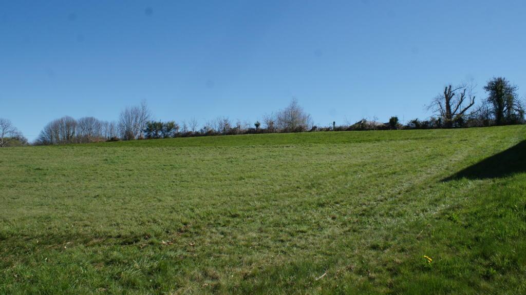 Terrains du constructeur NEW DEAL IMMOBILIER • 1500 m² • SADROC