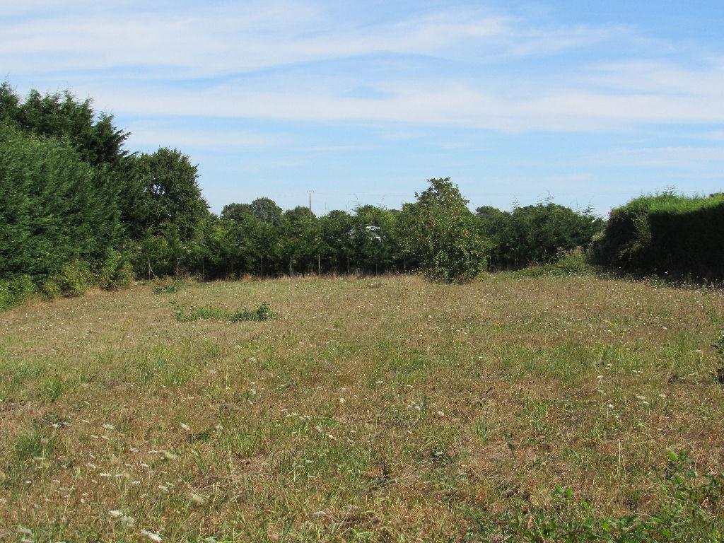 Terrains du constructeur ORPI AGENCE DES DEUX LIONS • 2147 m² • POIROUX