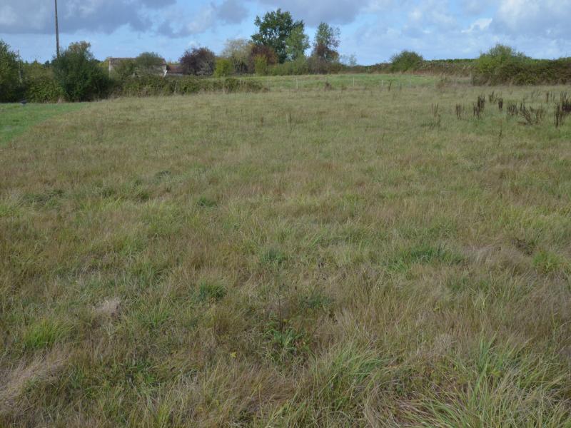 Terrains du constructeur PLANET FORCE • 0 m² • SAINT REMY