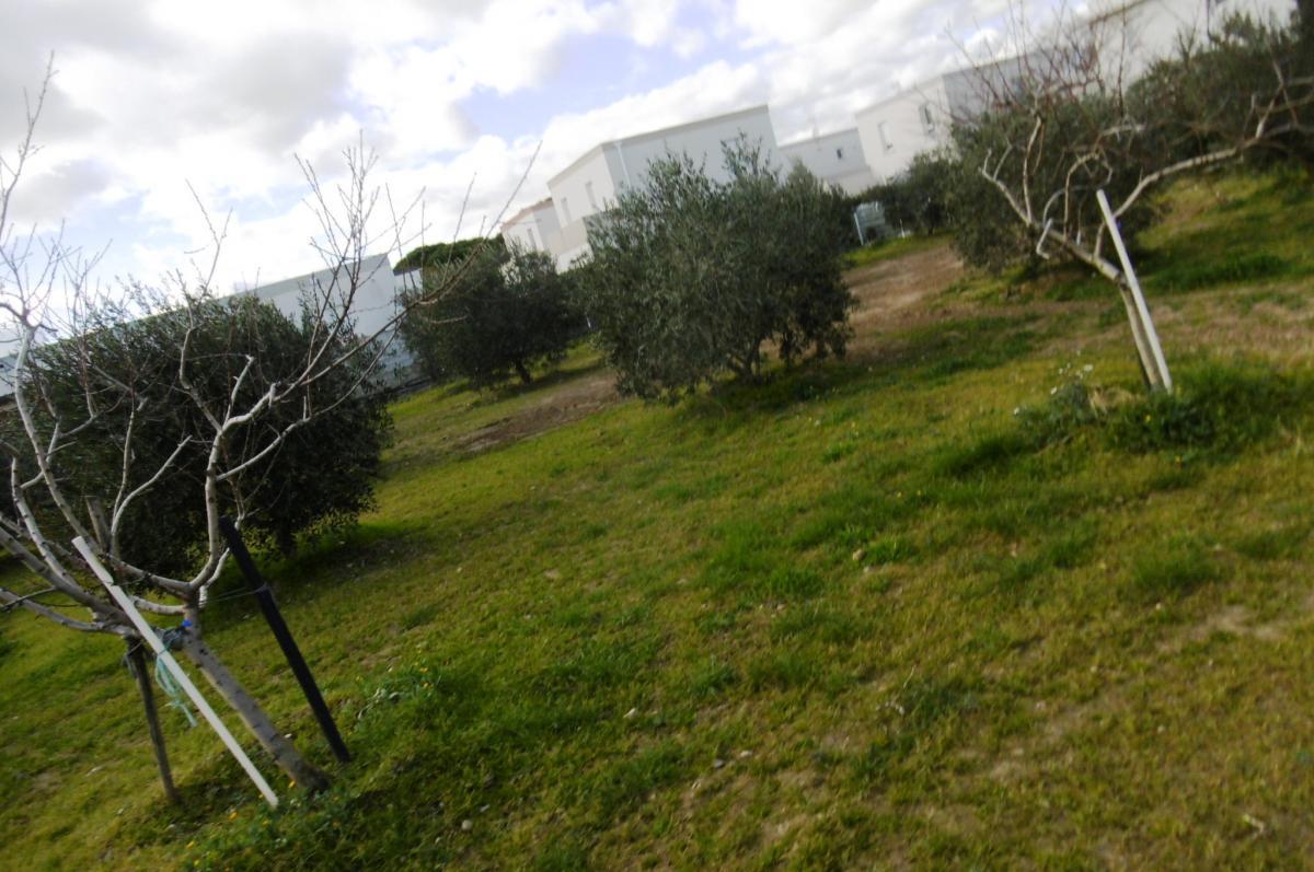 Terrains du constructeur MAISONS COTE SOLEIL 34 • 893 m² • BEZIERS