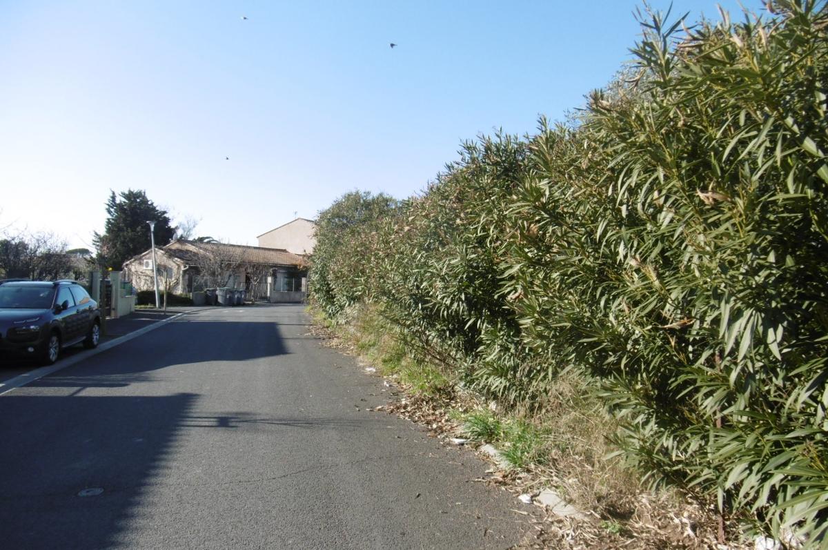 Maisons du constructeur MAISONS COTE SOLEIL 34 • 80 m² • CAUX