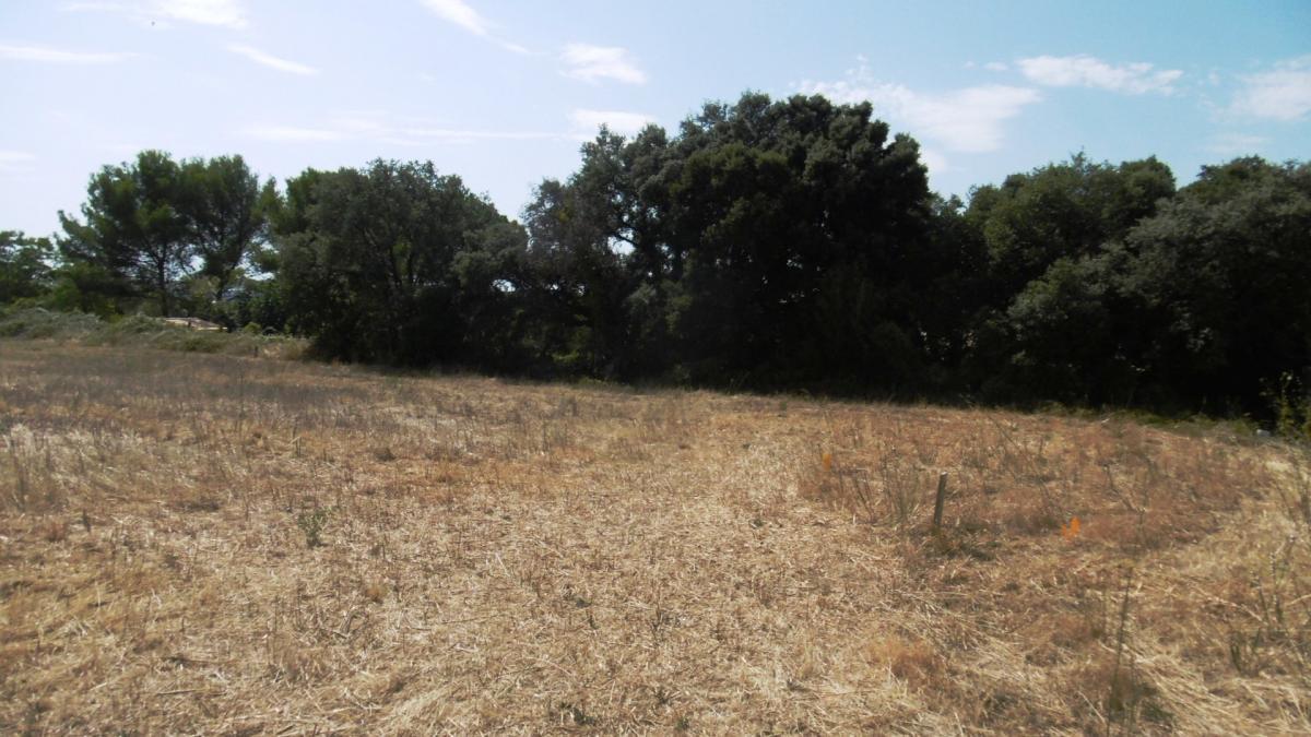 Terrains du constructeur MAISONS COTE SOLEIL 34 • 360 m² • VENDEMIAN