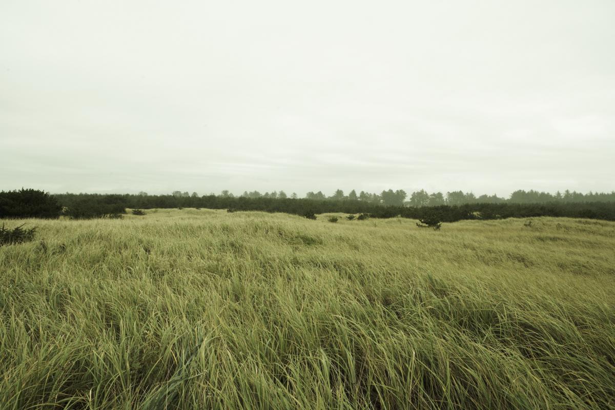 Terrains du constructeur ESQUISS BEAUZELLE • 488 m² • PIBRAC