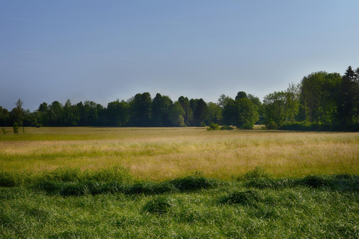 Terrains du constructeur ESQUISS BEAUZELLE • 670 m² • FONTENILLES