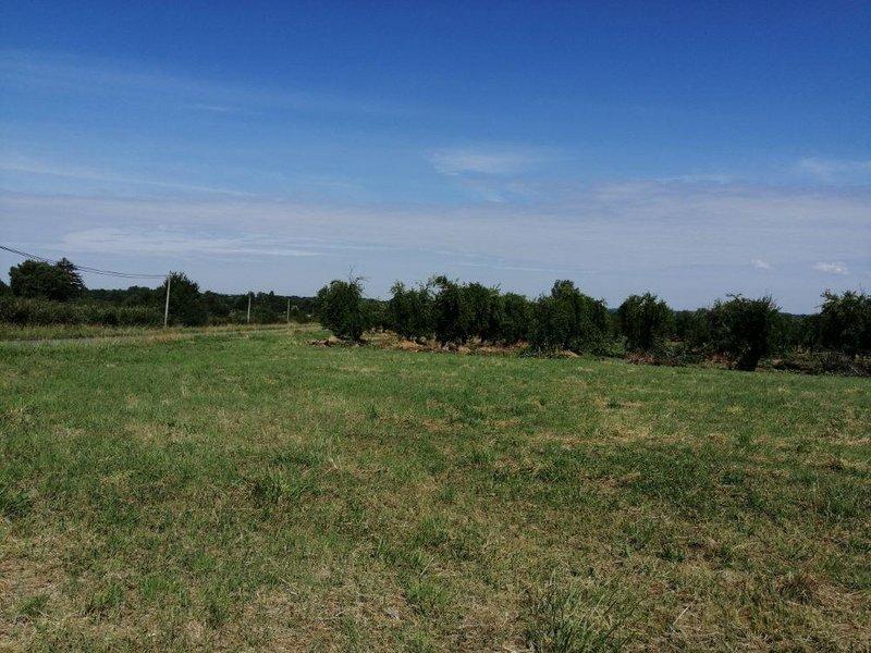 Terrains du constructeur LES MAISONS AURA - AGENCE DE BERGERAC • 978 m² • COURS DE PILE