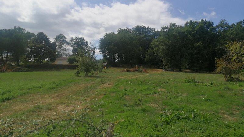 Terrains du constructeur LES MAISONS AURA - AGENCE DE BERGERAC • 1875 m² • SAINT NEXANS