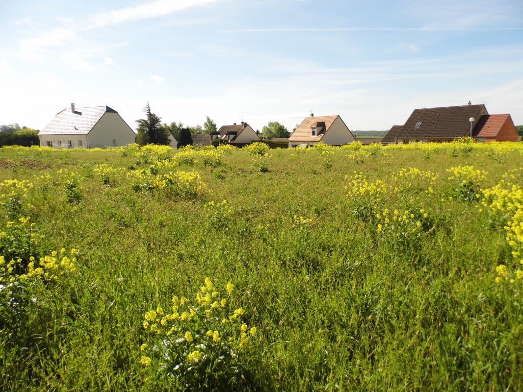 Terrains du constructeur MAISONS ARLOGIS REIMS • 605 m² • VAL DE VESLE