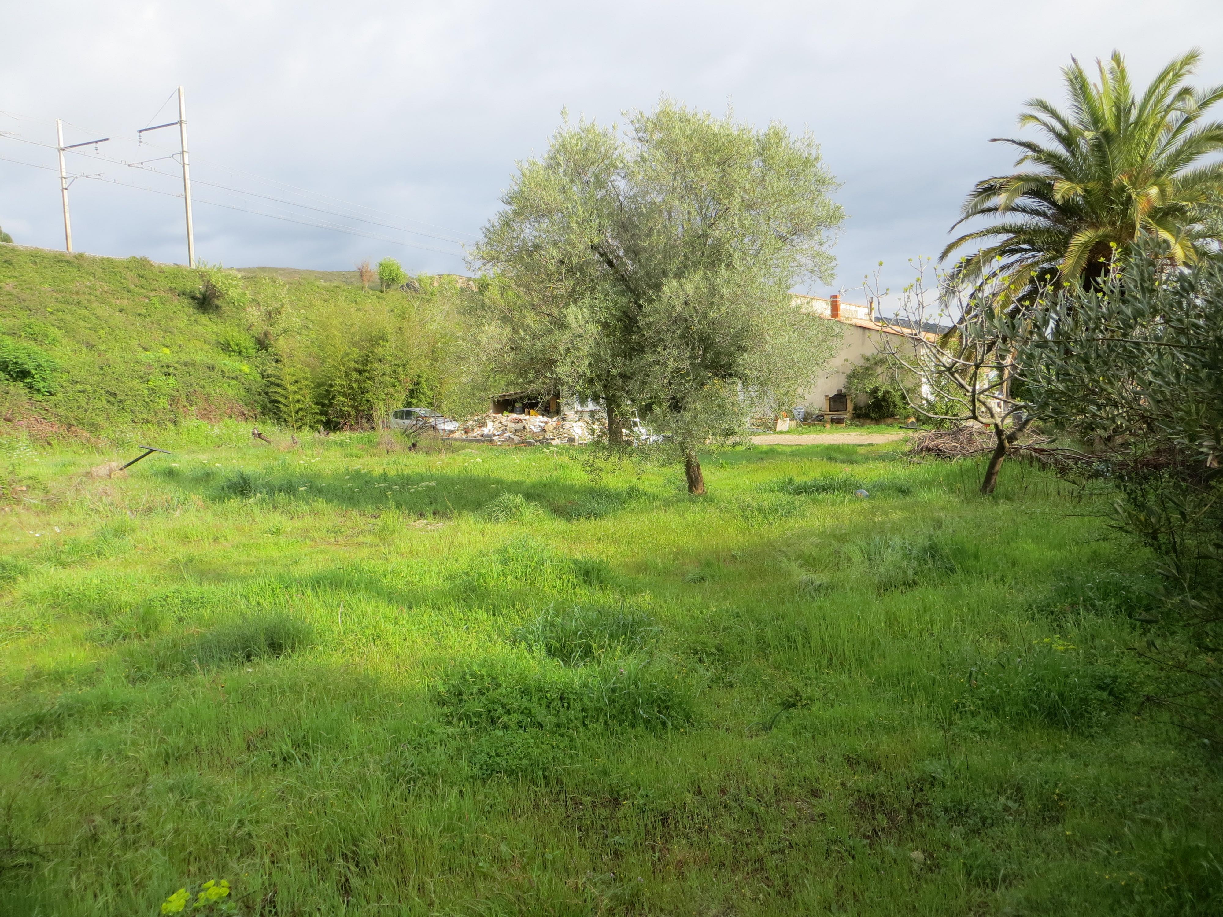 Terrains du constructeur LES MAISONS MJ • 500 m² • SERNHAC