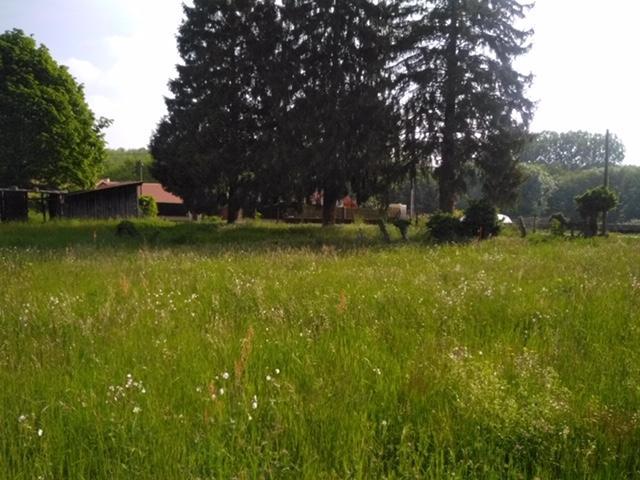 Terrains du constructeur ESQUISS 38 • 480 m² • LA BUISSE