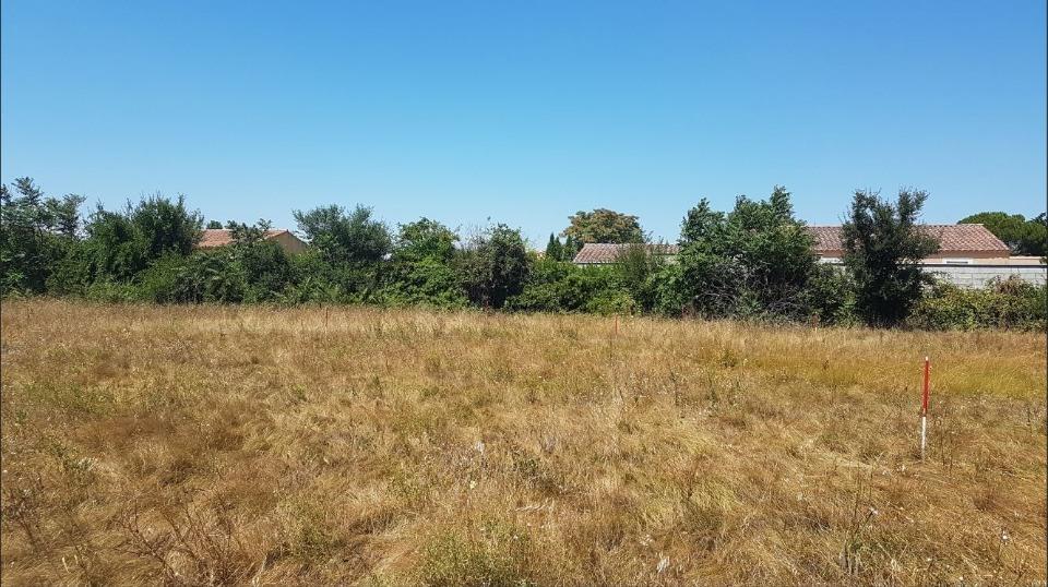 Terrains du constructeur LES MAISONS DE MANON • 291 m² • AVIGNON