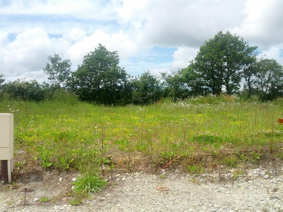Terrains du constructeur LMP CONSTRUCTEUR • 342 m² • LA TRANCHE SUR MER