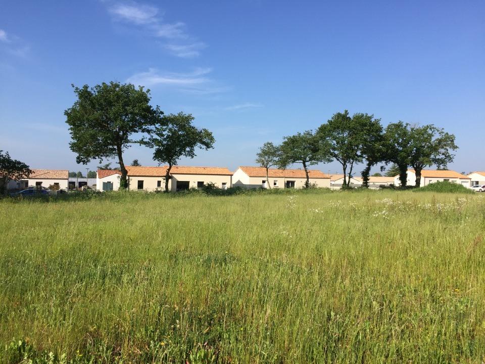 Terrains du constructeur LMP CONSTRUCTEUR • 635 m² • SAINT AUBIN DES ORMEAUX