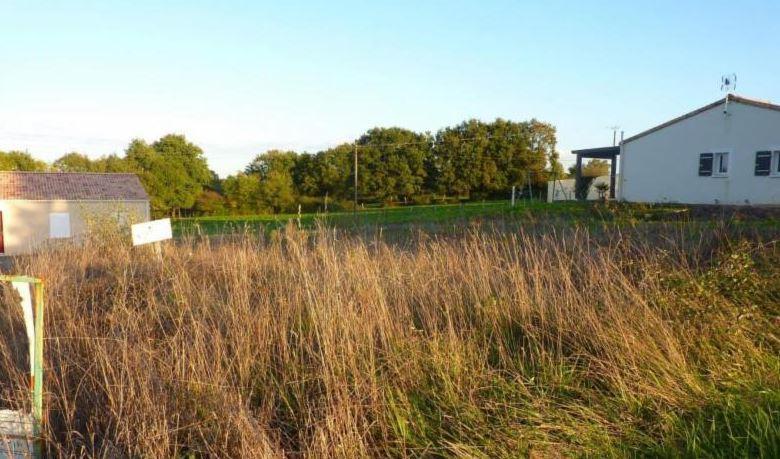 Terrains du constructeur LMP CONSTRUCTEUR • 500 m² • CHANTONNAY