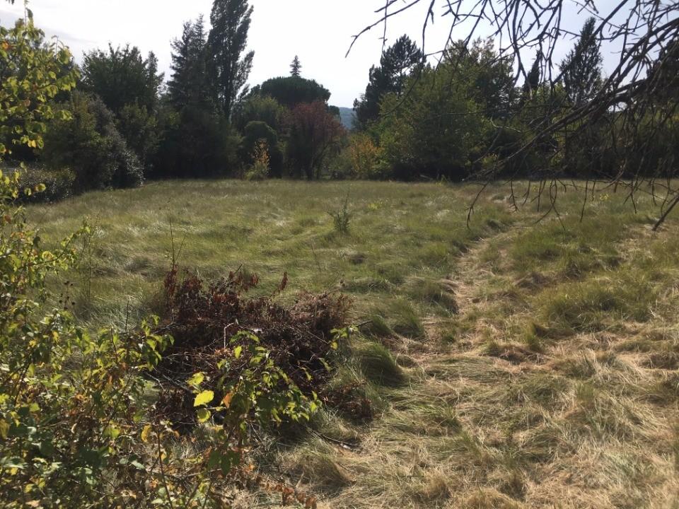 Terrains du constructeur MAISONS FRANCE CONFORT • 1177 m² • MANE