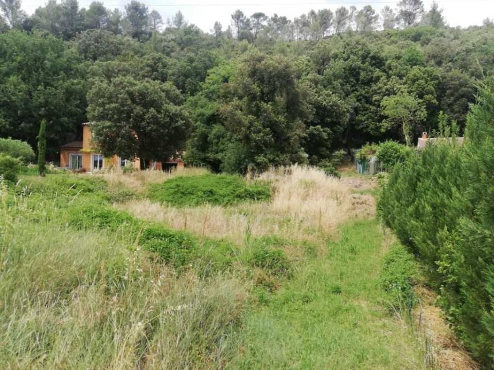 Terrains du constructeur MAISONS FRANCE CONFORT • 1800 m² • BELGENTIER