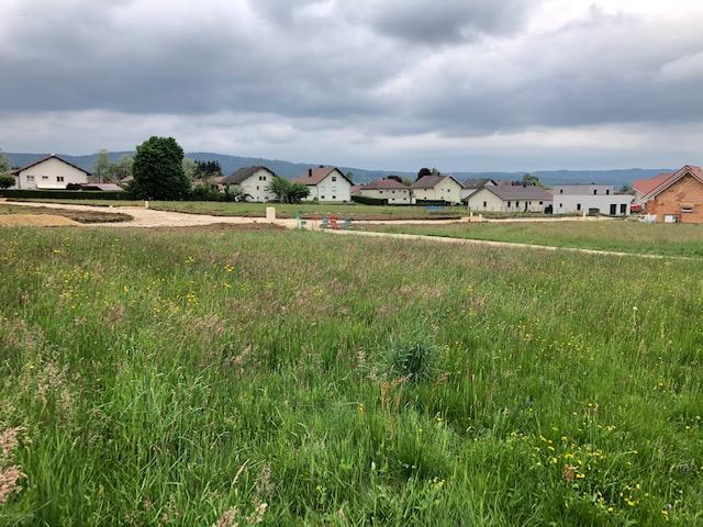 Terrains du constructeur LA PIERRE TRANSACTION • 564 m² • LEVIER