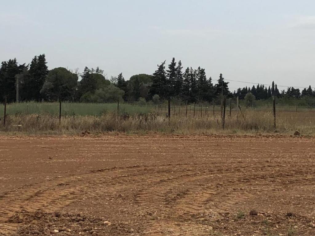 Terrains du constructeur CMAMAISON • 450 m² • SAINT GILLES